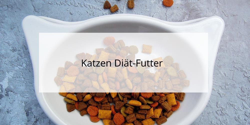 Katzen Diätfutter