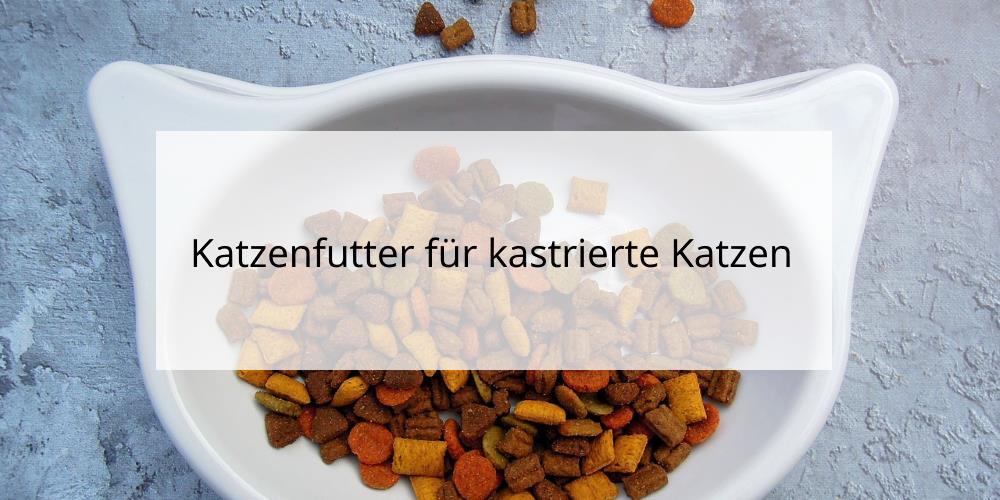 Katzenfutter für kastrierte Katzen