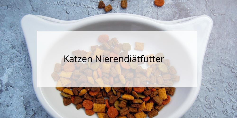Nierendiätfutter für Katzen